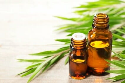 Tous les bienfaits de l'huile essentielle d'arbre à thé pour les cheveux 1